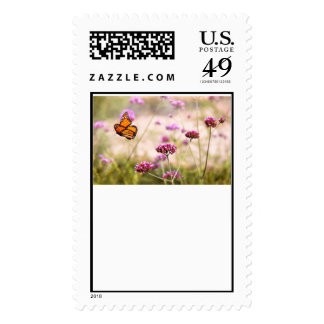 Butterfly - Monarach - The sweet life Postage