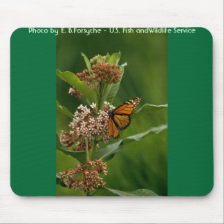 Butterfly / Monarch Mouse Pads