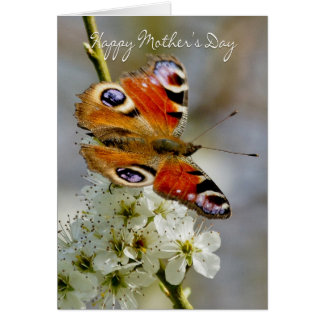 Butterfly - Mother's Day Card With Butterfly On Ha