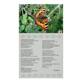 Butterfly Motivational Desiderata Poster print
