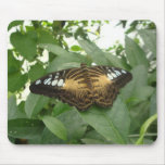 Butterfly mouse mat 0002
