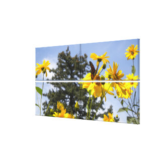 Butterfly N Sunflowers 2 Wrapped Canvas Stretched Canvas Prints