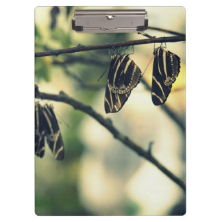 Butterfly Nap Clipboard