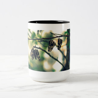 Butterfly Nap Two-Tone Coffee Mug