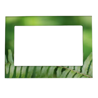 Butterfly Nature Photo Frame Magnet