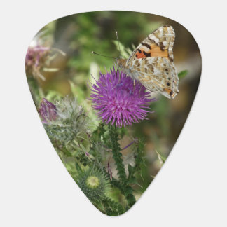 Butterfly Nature Photo Standard Guitar Pick