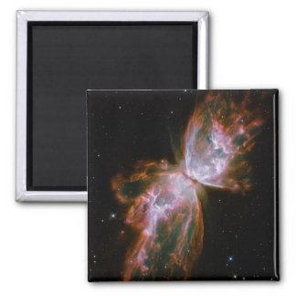 Butterfly Nebula Magnet
