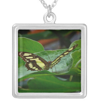 Butterfly Personalized Necklace