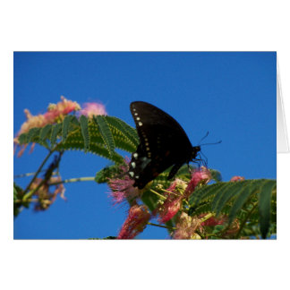 Butterfly Notecard Card