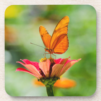Butterfly on a Flower Beverage Coasters