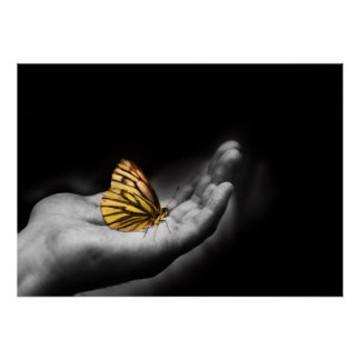 butterfly on a hand poster