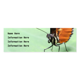 Butterfly on a Leaf. Double-Sided Mini Business Cards (Pack Of 20)