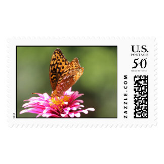 Butterfly On A Pink Flower Postage