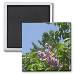 Butterfly on a Pretty Lilac Shrub Magnet