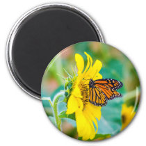 Butterfly on a Sunflower Magnet