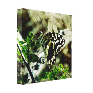 Butterfly on a twig canvas print