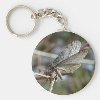 Butterfly on a Twig Keychain