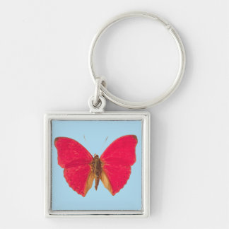 Butterfly on Blue Keychain