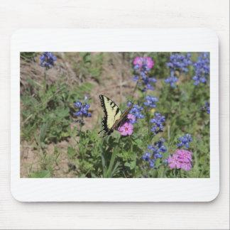 Butterfly on Bluebonnet Mouse Pad