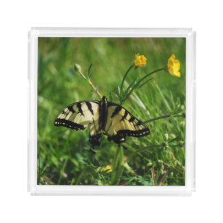Butterfly on Buttercups Acrylic Tray