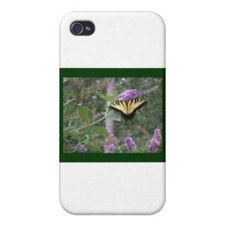 Butterfly on Butterfly Bush iPhone 4/4S Cases