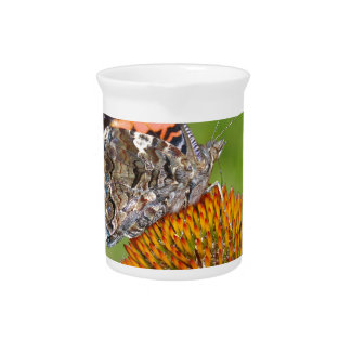 BUTTERFLY ON  CONE FLOWER DRINK PITCHER