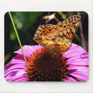 Butterfly on Coneflower-08 Mouse Pad