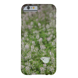 Butterfly on Creeping Thyme Barely There iPhone 6 Case