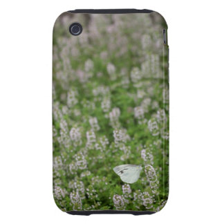 Butterfly on Creeping Thyme Tough iPhone 3 Cover