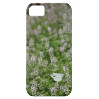 Butterfly on Creeping Thyme iPhone SE/5/5s Case