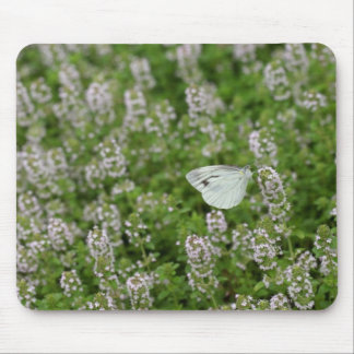 Butterfly on Creeping Thyme Mouse Pad