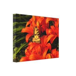 Butterfly on Day Lilies Canvas Print
