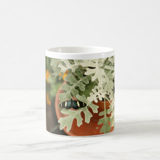 Butterfly on Dusty Miller Coffee Mug