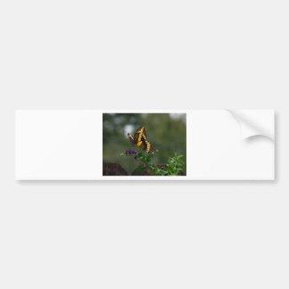 Butterfly on flower bumper sticker