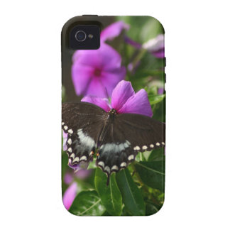 Butterfly on Flower Case-Mate iPhone 4 Covers