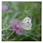 Butterfly on flower large square tile
