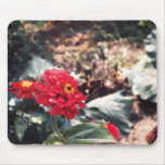 butterfly on flower mousepad