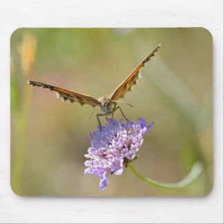 Butterfly on flower mouse pads