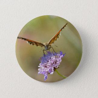 Butterfly on flower pinback button