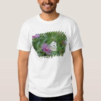 Butterfly on flower t shirt