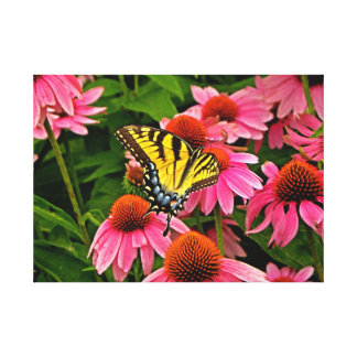 Butterfly on Flower v21 Canvas