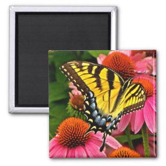 Butterfly on Flower v22 Magnet