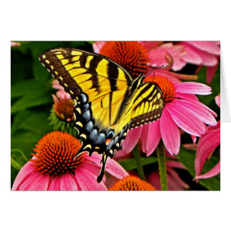 Butterfly on Flower v22 Note Card