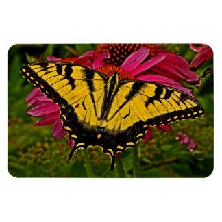 Butterfly on Flower v3 Magnet