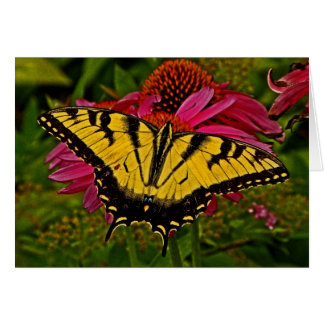 Butterfly on Flower v3 Note Card