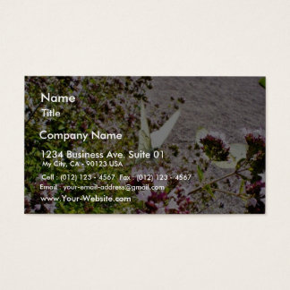 Butterfly On Flowers Business Card