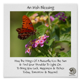 Butterfly On Flowers ~ Irish Blessing Posters