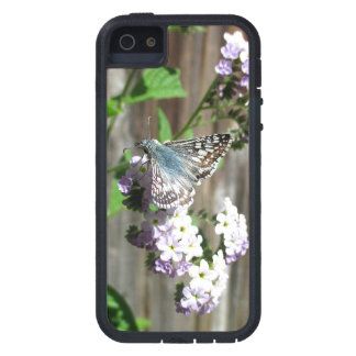 Butterfly on Heliotrope Case For iPhone SE/5/5s