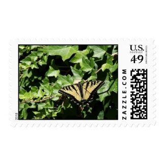 butterfly on ivy stamp