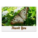 Butterfly on Jasmine Thank You Card
